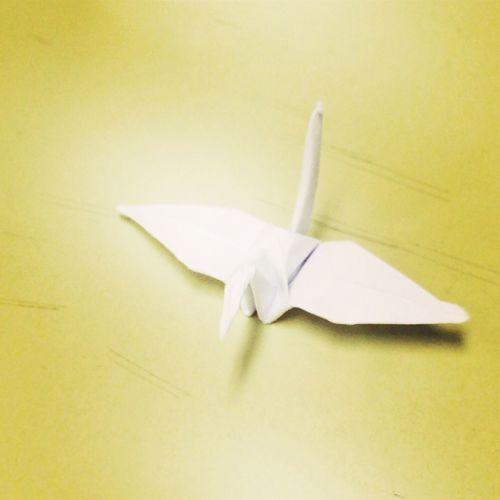今年は広島にいます。8月6日。 Hiroshima Peace 折り鶴