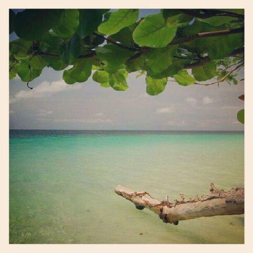 Ig_thailandia Igth Instanaturelover Thailand thailand_allshots thaistagram sea beach