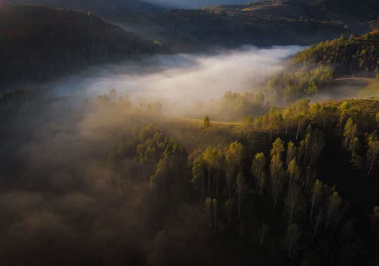 High angle view of trees on landscape against sky, in a misty morning