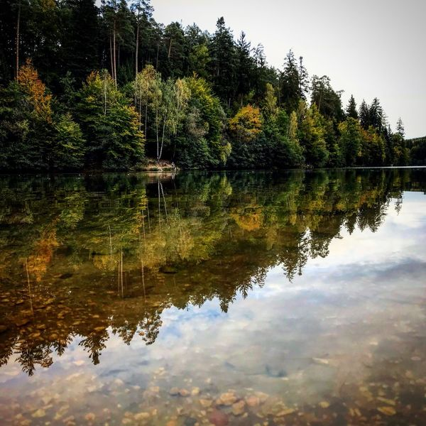 Reflection Tree Lake Water Nature Outdoors No People Beauty In Nature Day Sky Mirror In The Water Mirror Color Full Nature Autumn Forest Landscape