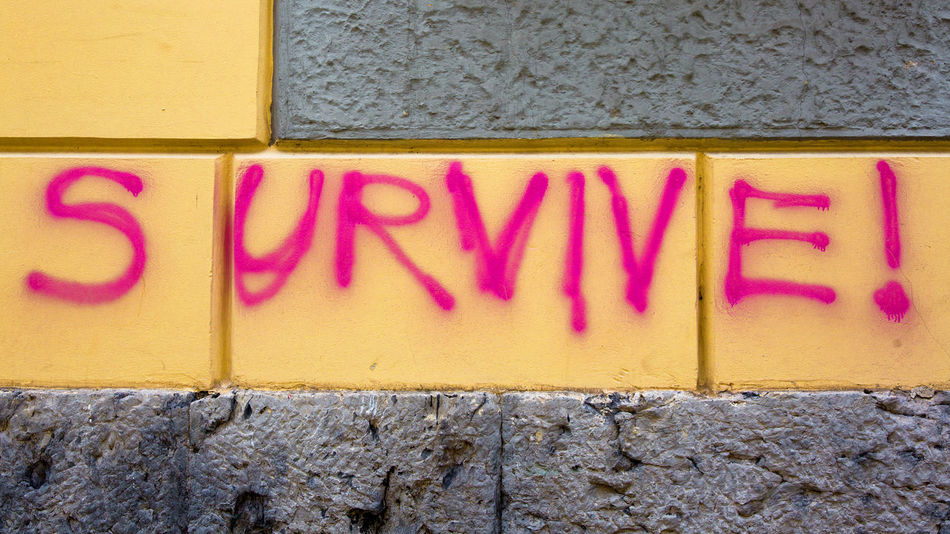 Graffiti Life Survive Survive! Architecture Built Structure Capital Letter Close-up Communication Day Indoors  Message Multi Colored No People Pink Color Red Sign Sprayed Survival Text Textured  Wall Wall - Building Feature Western Script Yellow