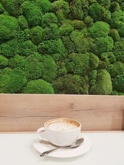 Coffee Cup Coffee - Drink Drink Food And Drink Table Tea - Hot Drink Refreshment Espresso Coffee Break Saucer No People Green Color Latte Green Tea Healthy Eating Teabag Frothy Drink Freshness Day Matcha Tea