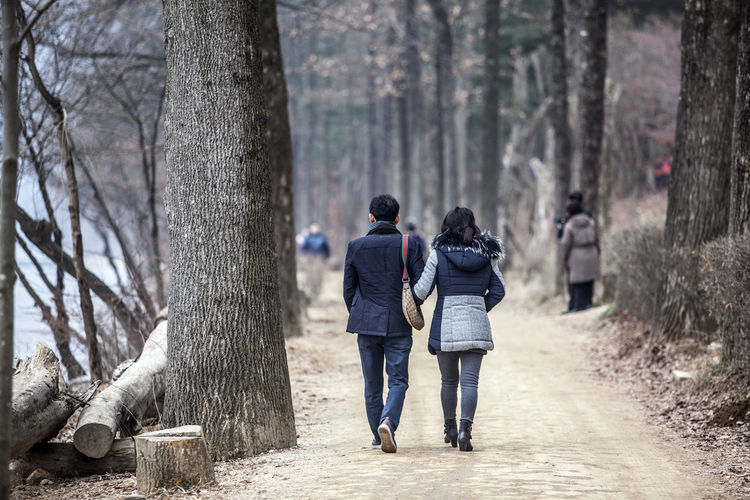Alone Casual Clothing Forest Front View Full Length Getting Away From It All Leisure Activity Lifestyles Man And Woman Men Nami Island Occupation Real People Rear View Riverside Side View Standing The Way Forward Togetherness Trees Walking Winter Women