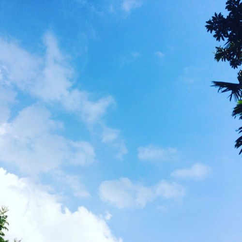 Peaceful Cloud - Sky Home Is Where The Art Is Myhome EyeEm Nature IPhoneography Summer Blue After Rain Vietnam