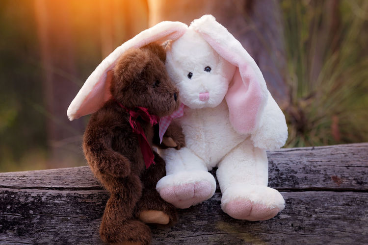 Close-Up Of Easter Bunny And Teddy Bear On Wood