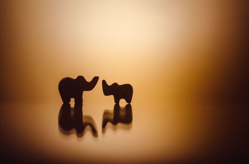 love comes in all sizes Animal No People Elephant My Best Photo