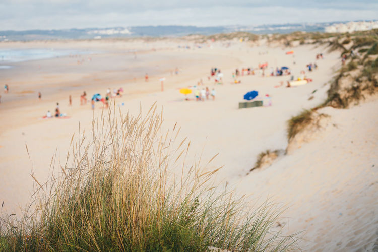 Beach Land Sand Water Sea Nature Beauty In Nature Day Group Of People Vacations Holiday Incidental People Large Group Of People Scenics - Nature Trip Plant High Angle View Travel Outdoors Marram Grass