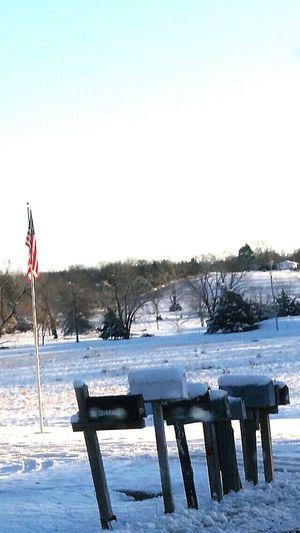 Snow Day Snow