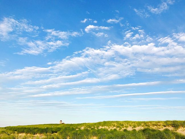 Blue skies at Race Point Beach Field Grass Sky Nature Beauty In Nature Landscape Tranquil Scene Scenics Day Tranquility Cloud - Sky Outdoors Blue No People Vapor Trail Cape Cod Provincetown  PTown