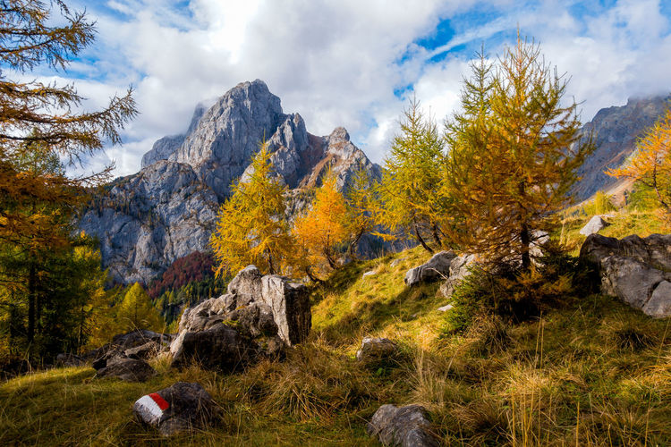 Colorful autumn scene on mountain. Sky with clouds,colorful trees and mountain peak Cloud - Sky Sky Tree Nature Scenics - Nature Rock Mountain Land Solid Plant Environment Rock - Object Landscape Beauty In Nature Autumn No People Day Forest Non-urban Scene Mountain Range Change Outdoors Mountain Peak Formation