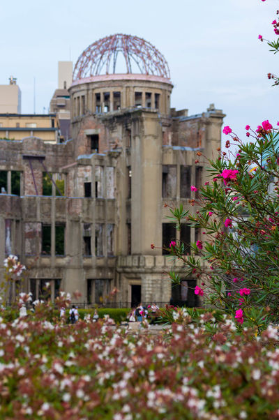 They call it hope A-Bomb Dome Architecture Built Structure Flower Hiroshima Hiroshima,japan Japanese Culture No People Travel Destinations