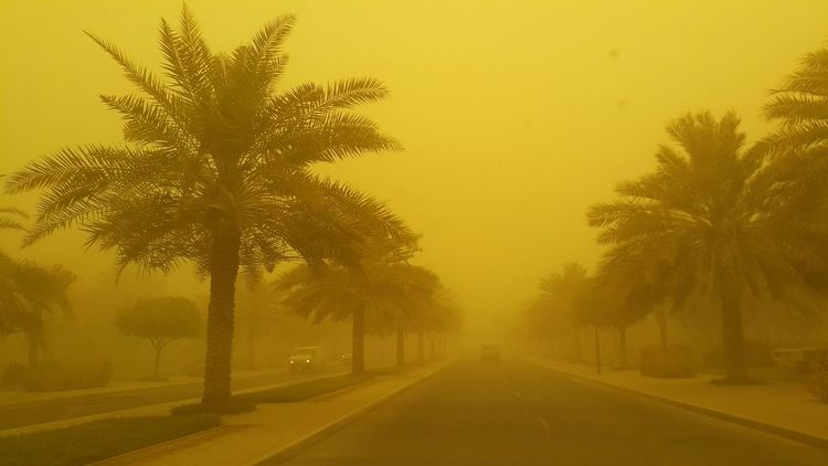 Dubai turned orange yesterday. Sandstorm View From The Car Darksky On The Road Poor Visibility Sandy Dubai The Purist (no Edit, No Filter) Telling Stories Differently Showing Imperfection