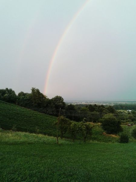 Rain Raindrops Rainbow Nature