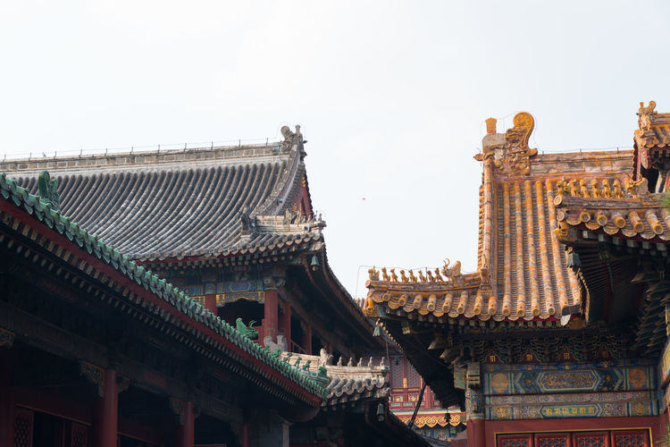 "Inside ""Lama temple"", Yonghegong, Beijing, China ASIA Architecture Beijing Colourful Lama Temple Roof Spirituality Tradition Travel Architecture Building Exterior Built Structure China Clear Sky Day Decoration Design Low Angle View No People Outdoors Roof Sacred Sky Temple Traditional Building"