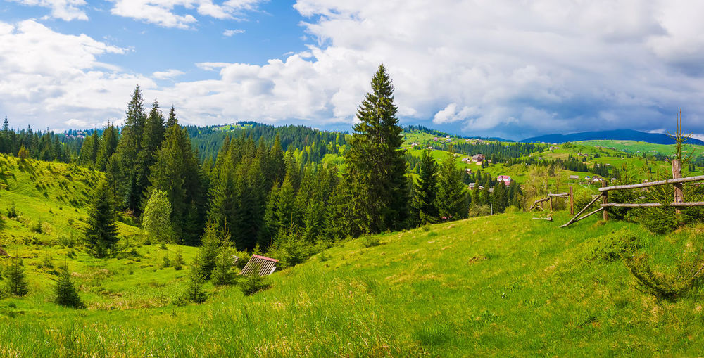Picturesque spring Carpathians landscape panorama with an old hut in the forest and wooden split rail fence across a green and lush pasture on the valleys of Yablunytsya village, Ukraine Fence Silence Wild Ranch Beauty Path Country Pasture Europe Ukraine Carpathians Environment Fir Evergreen Pine Tree Village Farm Grass Vintage Wood Home House Valley Park Clouds Spring Hill Coniferous Scenic View Scenery Countryside Beautiful Wooden Tourism Outdoor Field Forest Rural Panorama Travel Summer Sky Green Mountains Nature Landscape Meadow Hut 15367706 15367706 10386741 15367706 The Mobile Photographer - 2019 EyeEm Awards The Great Outdoors - 2019 EyeEm Awards My Best Photo