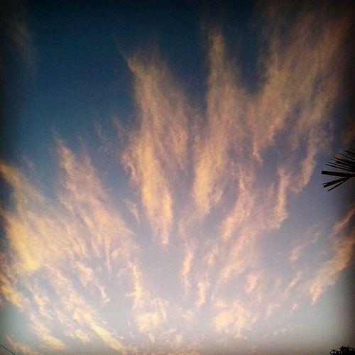Morning Sky Clouds Sun
