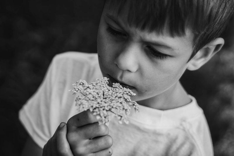 Smelling flower. Childhood Boys Elementary Age One Person Real People Child Children Only Focus On Foreground Food And Drink Food Outdoors One Boy Only Close-up Eating Day Freshness People