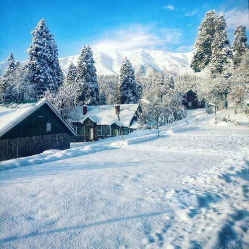 Gulmarg, Kashmir after a Snowfall Snow Gulmarg Ski Resort  Skiing ❄ Kashmir India Jammu And Kashmir Apharwat Pir Panjal Range Winter Cold Temperature Snowcapped Mountain Building Tranquility Beauty In Nature Tranquil Scene Building Exterior Cottage Tree Nature