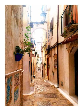 Warmlight Light Mediterranean  Mediterranean Village Blue