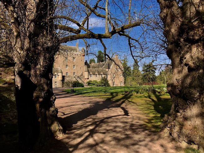 History Architecture Tree Shadow Built Structure Sunlight Day Old Ruin No People Outdoors Nature Castle Cawdor Castle Scottland Travel Destinations Travel Photography