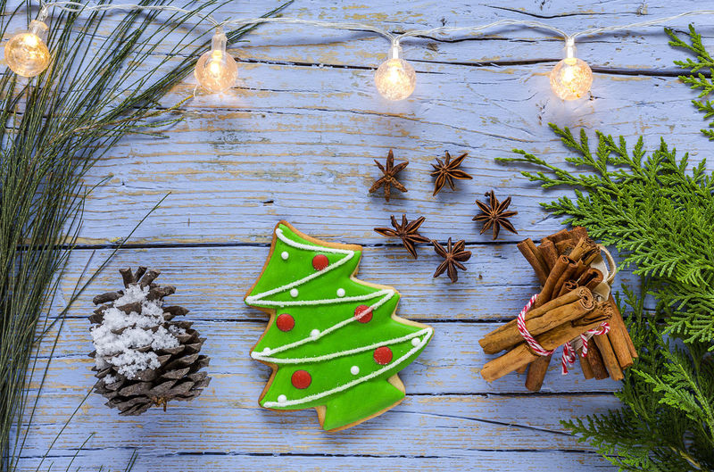 Beauty In Nature Celebration Christmas Christmas Decoration Coniferous Tree Day Green Color High Angle View Holiday Leaf Leaves Nature No People Outdoors Pine Cone Plant Plant Part Small Table Tree Winter Wood - Material