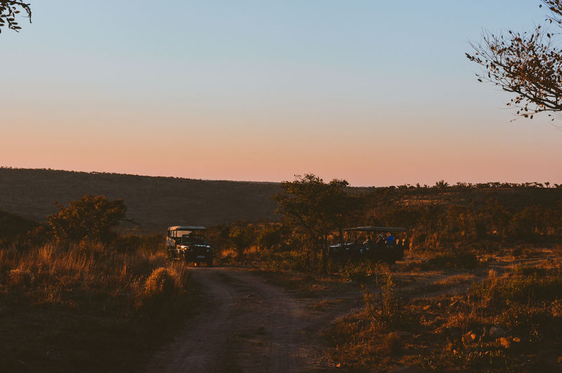 "the first day at the safari was amazing, we saw elephants, hippos and even a lion! it was full of experiences (and photos) and ended with this beautiful sunset over ""the bush"". Country Road Countryside Jeep Landscape Nature Outdoors Remote Road Safari Sunset Tranquil Scene Vehicle"