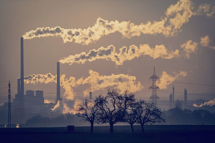 How Do We Build The World? Industry Landscape Industrial Landscapes Chimney Trees