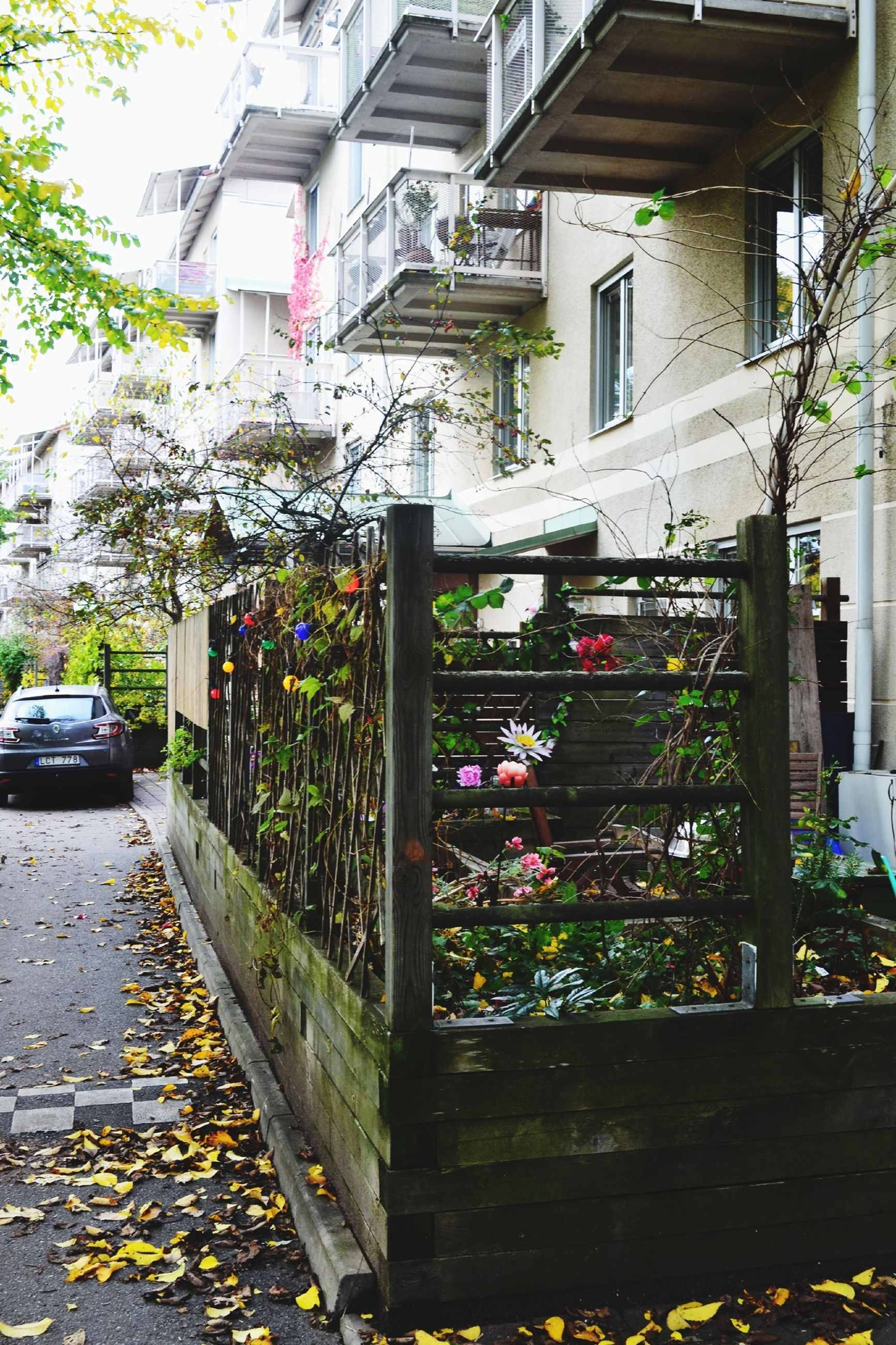 building exterior, architecture, built structure, street, city, residential building, residential structure, house, tree, day, outdoors, building, sidewalk, plant, window, no people, car, in a row, leaf, abundance