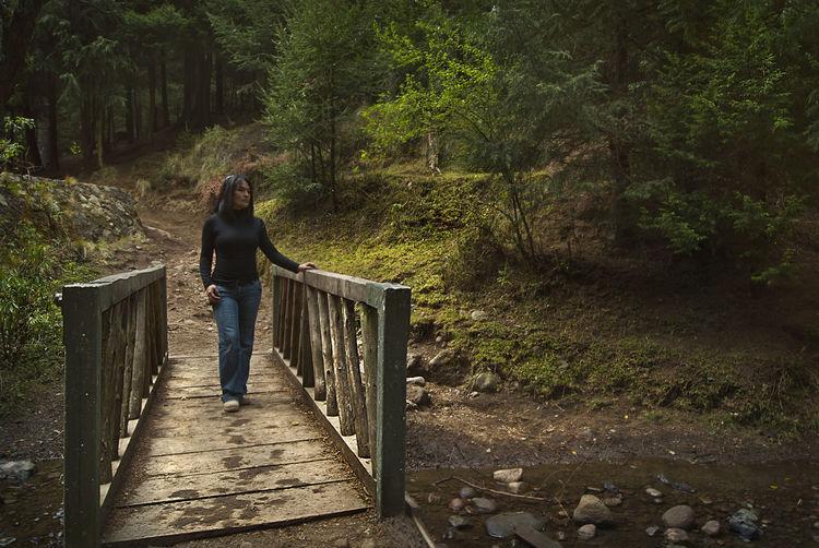 Woman walking on footbridge in forest