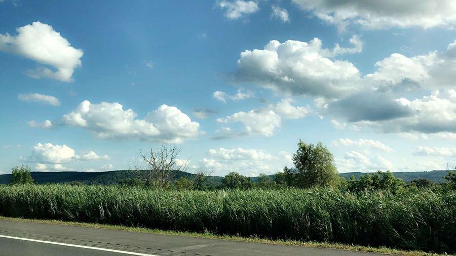 Sky Field Cloud