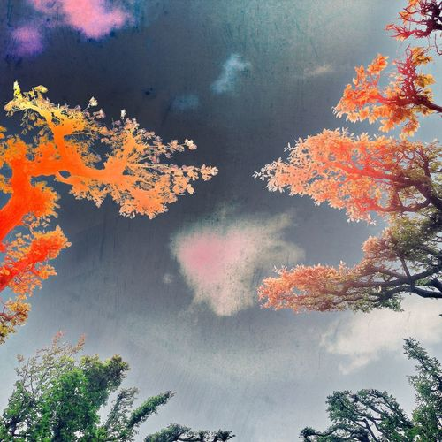 Clouds And Sky Urban Nature Experimental Mobile Artist
