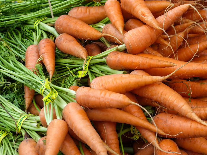 Close-up of fresh vegetables
