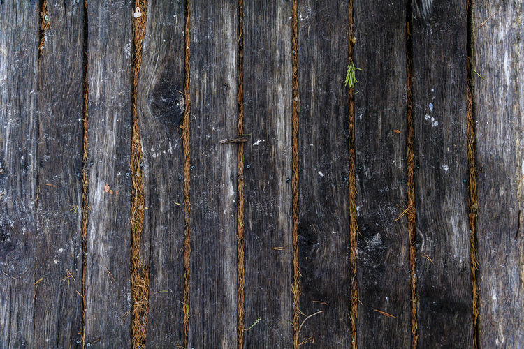 Walking towards the beach, sometimes you don't see what you're setting your feet on. Textured  Backgrounds Full Frame Wood - Material No People Weathered Pattern Close-up Wood Old Rough Plank Wall - Building Feature Day Wood Grain Outdoors Gray Brown Striped Abstract Sweden