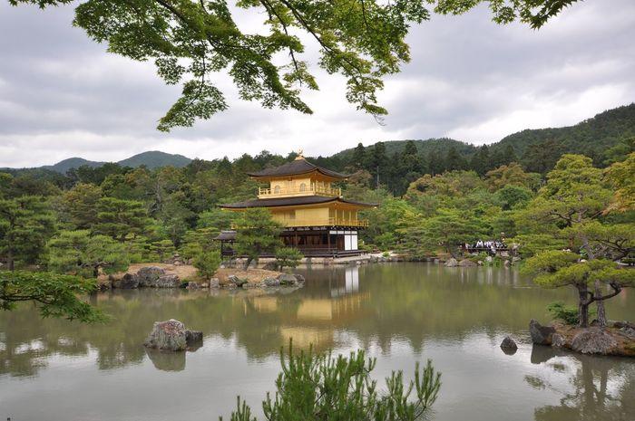 Architecture Golden Pavilion  Japan Kinkaku-ji Nature Shrine