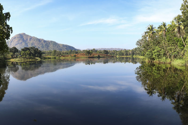 Reflections in the Periyar River Reflection Water Tranquility Tree Sky Lake Tranquil Scene Plant Beauty In Nature Scenics - Nature Nature Waterfront Cloud - Sky Day No People Idyllic Non-urban Scene Growth Symmetry Outdoors