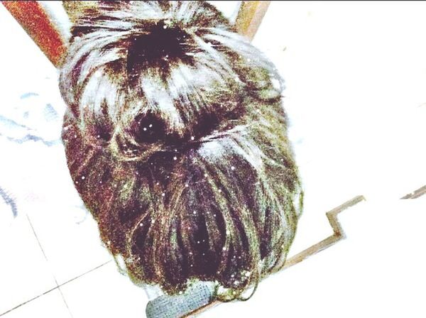 Hair Coque Frouxo