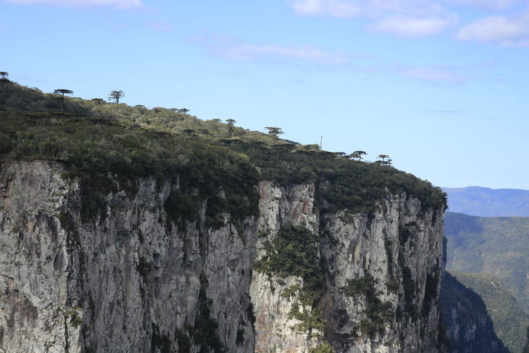 Adventure Beauty In Nature Cliff Day High Landscape Mountain Nature No People Outdoors Sky Steep Tree