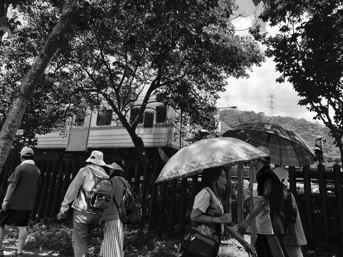 Outdoor photography series: On board Checheng Outdoor Photography Black And White Photography Travel Destinations My Asia Trip 2018 Tree Group Of People Plant Real People Architecture Umbrella Women Adult Men Lifestyles Day Rear View City People Outdoor Photography Black And White Photography Travel Destinations Chechen Train Station Taiwan My Asia Trip 2018 Tree Group Of People Plant Real People Architecture Umbrella Women Adult Men Lifestyles Day Rear View City People