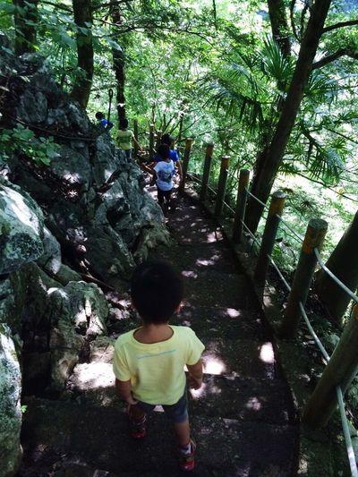 秩父 Happy Enjoy Forest Chichibu Japan Cave 洞窟 Hiking Walking EyeEm EyeEm Best Shots EyeEm Nature Lover EyeEm Gallery Hi! Enjoying Life