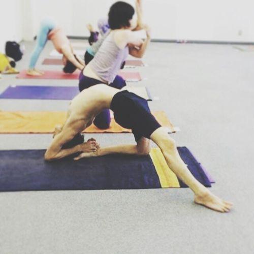 5日間のアジャストメントクリニック☆朝のマイソールクラス♬ アシュタンガヨガ ヨガ 広島 アジャストメントクリニック Yoga Mysore Class Nancy Gilgoff Yoga Space Siddhi Ashtangayoga