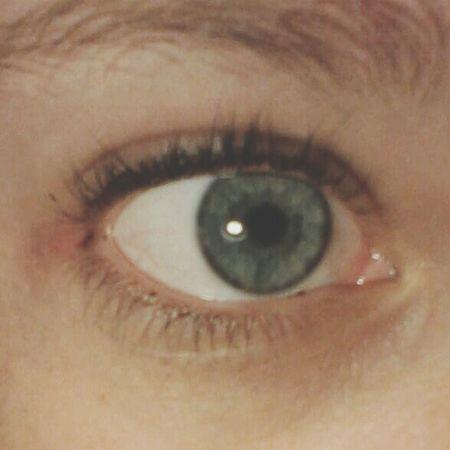 Eye BlueEyes Blue White