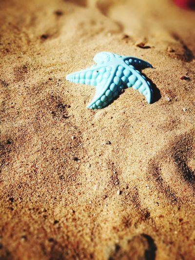 Summer Sand Beach Nature