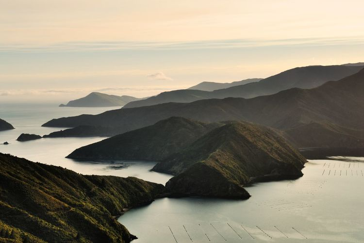 Sunrise landscape shot looking from the ridge above Richmond Bay across Beatrix Bay in the foreground and Forsyth Bay in the distance Fiord Fjord Landscape Marlborough Sounds Mountain Mountain Range Mussel Farm New Zealand Landscape Physical Geography Sea Sunrise Landscapes With WhiteWall