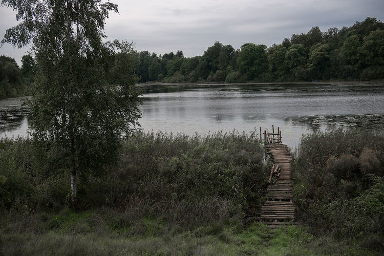 Dark Wrap Beauty In Nature Beauty In Nature Cloud - Sky Day Forest Growth Lake Landscape Nature No People Old Footbridge Outdoors Plant Scenics Sky Tranquil Scene Tranquility Tree Vintage Water Wooden Wooden Footbridge Wooden Pathway