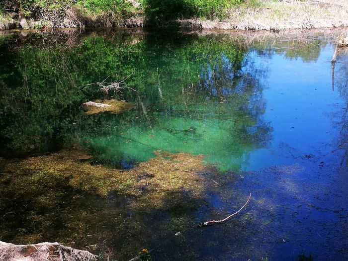 Saula Siniallikad Bluesprings Estonia Estonian Nature Siniallikad River View Water Reflection