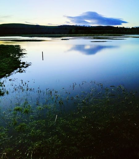 Lake Reflection Water Nature Beauty In Nature Landscape Sky Sunset Scotland Outdoors Countryside Kirriemuir Countryside Loch of Kinordy