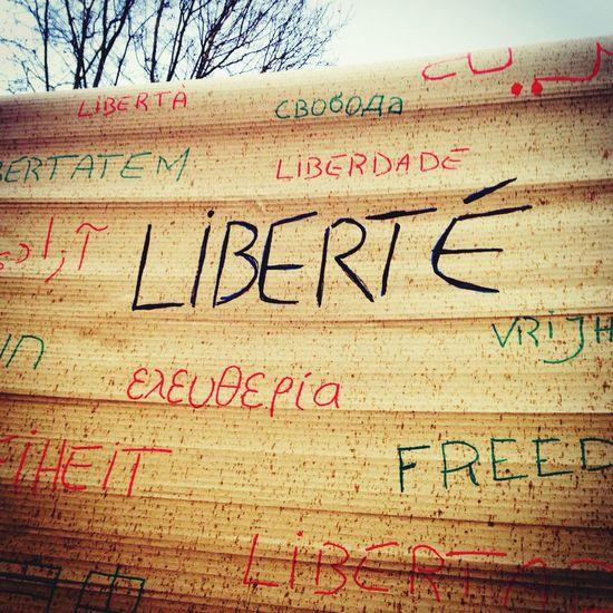 Place De La République Jesuischarlie Freedom Liberté Paris 11janvier2015