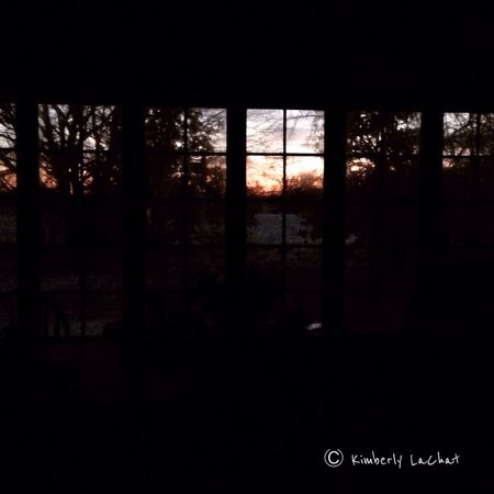 It's too cold for me to go outdoors today so this is the only way I could get a picture of the Sunrise . No edits/no filters Thankful Nature Collection Sky And Trees Love January 2015 Taking Photos EyeEm Nature Lover Nature Tadda Community