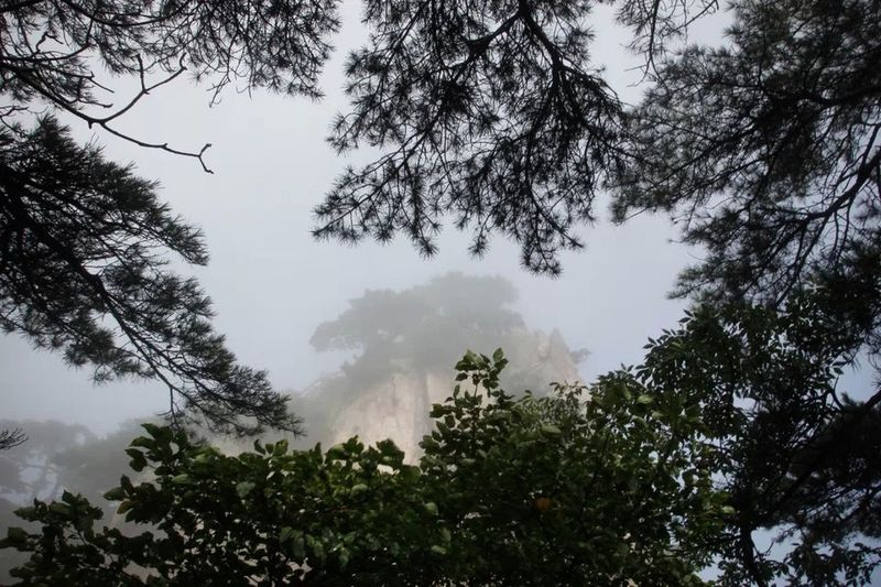 Hello World Taking Photos Enjoying Life Mountain Mount Huang