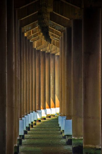 In A Row Architectural Column Memorial The Way Forward No People Spirituality Indoors  Day 好心情(1)